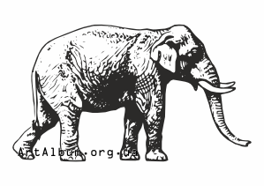 Clipart asian (indian) elephant
