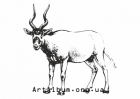 Clipart addax antelope