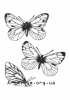 Clipart cabbage butterfly