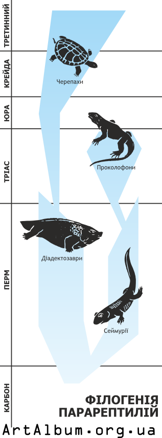 Clipart phylogeny of parareptiles in ukrainian